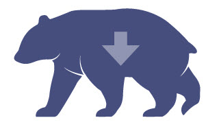 Image of market bear and down arrow.
