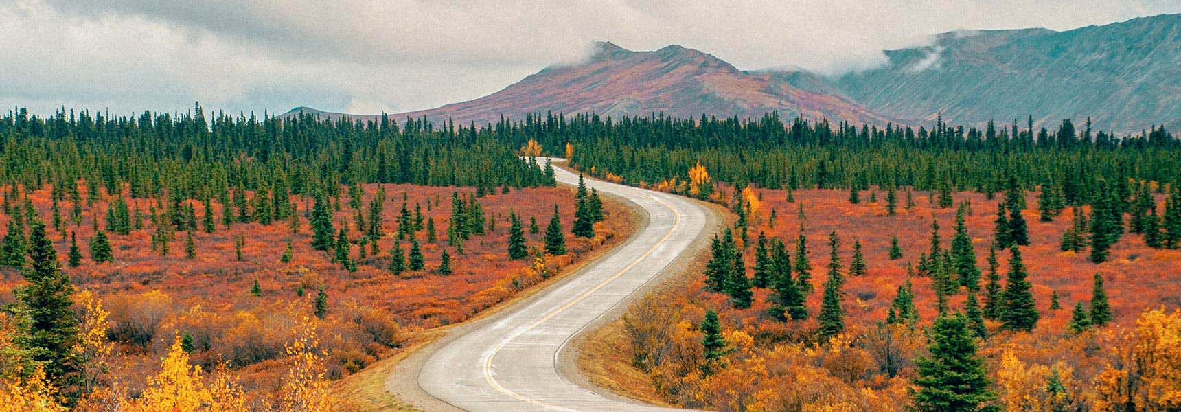 Image of a winding road.