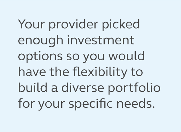 Graphic of a quote from the article saying, your employer picked enough investment options so you would have the flexibility to build a diverse portfolio for your specific needs.