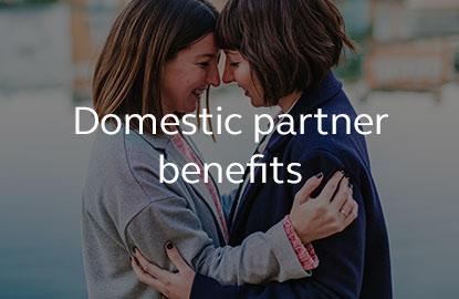 Image saying domestic partner benefits.