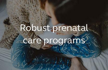 Image saying robust prenatal care programs.
