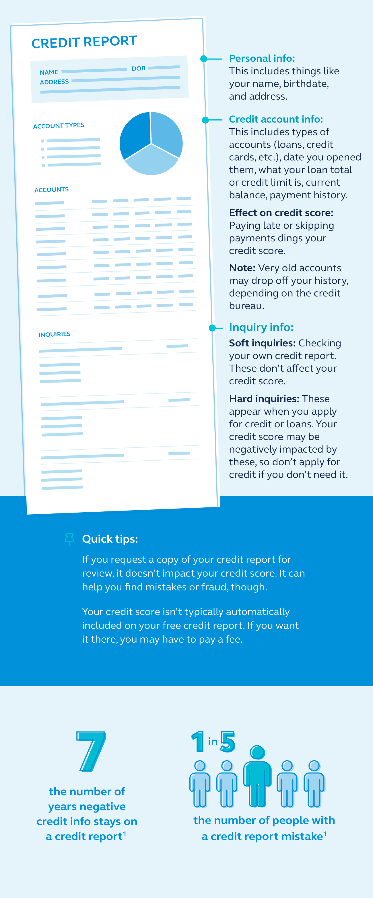 Graphic showing what a credit report looks like.