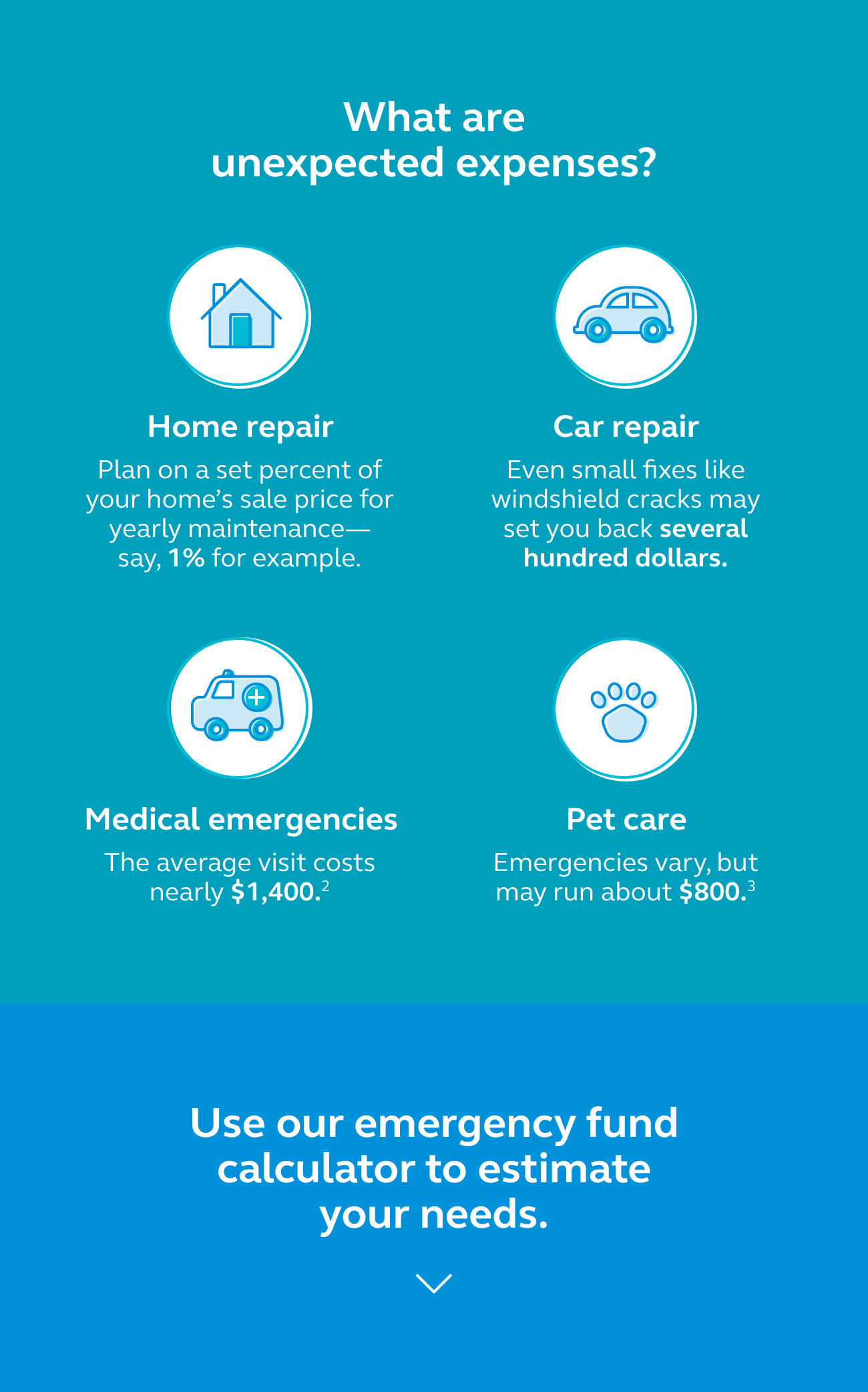 Graphic showing that unexpected expenses could be a home repair, a car repair, medical emergencies, or pet care.