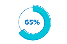 Icon showing 65% out of 100%.
